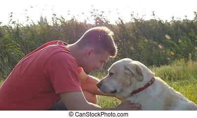 doré, extérieur, amour, labrador, conjugal, étreindre, slowmotion, paysage, nature., jeune, arrière-plan., animal., sien, retriver., caresse, homme, face., chien, lécher, baisers, mâle, amitié, jouer