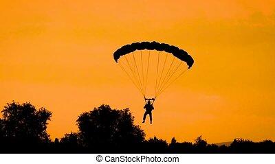 doré, silhouette, voler, ciel, parachute, coucher soleil, pendant, parachutiste, summer.