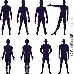 dos, longueur, entiers, devant, homme