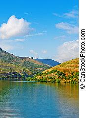 douro, vallée