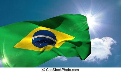 drapeau, brésil, national, souffler