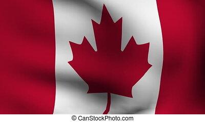 drapeau canada, animation