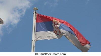 drapeau, ciel, serbie
