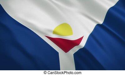 drapeau, fond, -, onduler, saint, martinet, vidéo