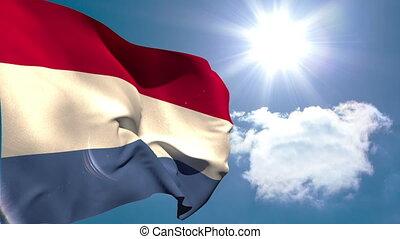 drapeau, hollandais, national, onduler