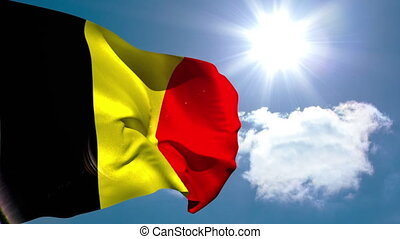 drapeau, national, onduler, belgique