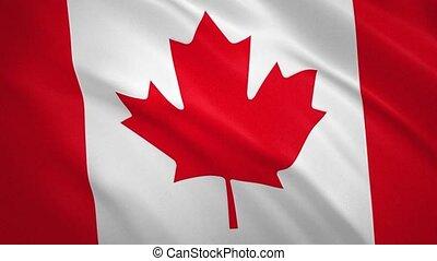 drapeau ondulant, canada, fond