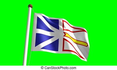drapeau terre-neuve