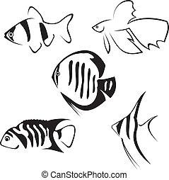drawing., fish., ligne, aquarium