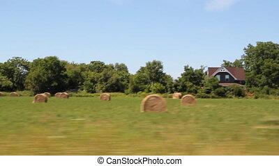 drive., rural, hayfield.