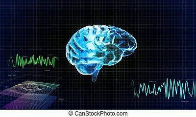 droit, cristal, graphique, vague, cerveau, côté