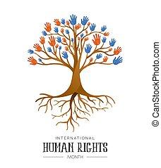 droits, gens, arbre, mains humaines, international