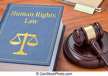 droits, -, livre, humain, marteau, droit & loi