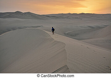 dunes, ica, région, sable, seul, huacachina, peru., homme