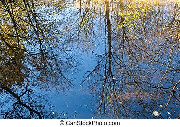 eau, autumn., réflexe, surface., arbres