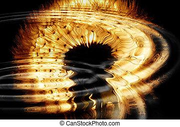 eau, backlit, ripples., reflété, pissenlit