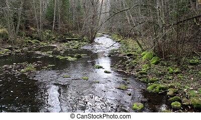 eau, doucement, ruisseau, écoulement