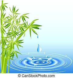eau, feuilles, tomber, bambou, gouttes