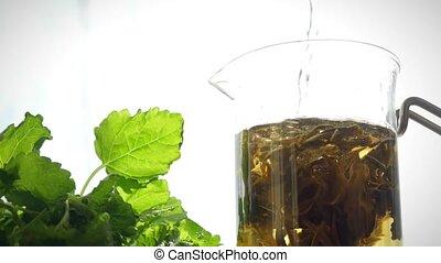 eau, intérieur., ébullition, thé, fleurir, brassage, fleur, verser, théière, verre