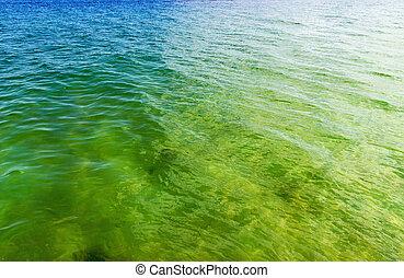 eau, mer, vague