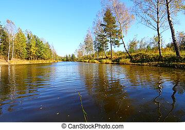 eau, réflexions, automne