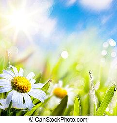 eau, résumé, ciel, fond, art, été, soleil herbe, fleur, gouttes