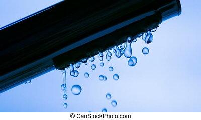 eau, tête, courant, douche