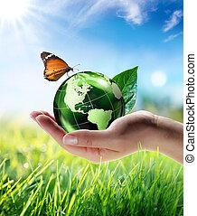 eco-amical, concept