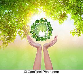 eco, la terre, femme, tenir mains, amical