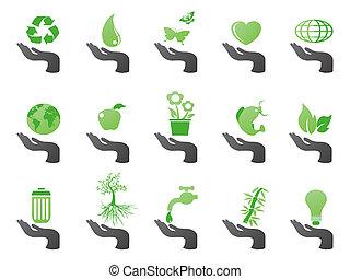 eco, main, vert, icônes