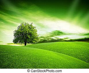 eco, planète, vert