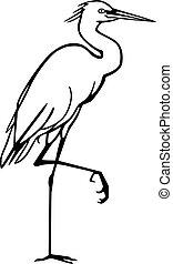 egret, neigeux