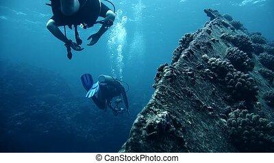 el, d, sharm, naufrage, egypte, cheikh, visiter, giannis, mer, plongeurs, rouges