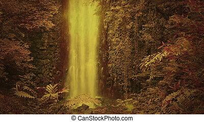 enchanté, chute eau, forêt