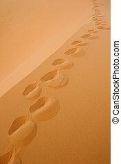 encombrements, deseret, sable