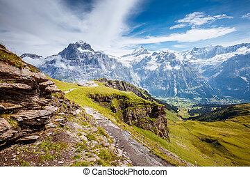 endroit, emplacement, alpes, sunlight., valley., vallée, grindelwald, grand, lueurs, suisse, alpin