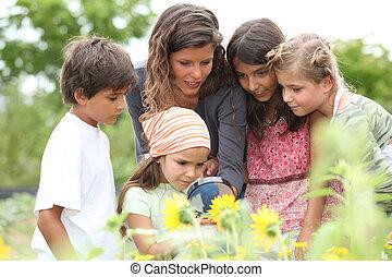 enfants, classe, parc, avoir, nature