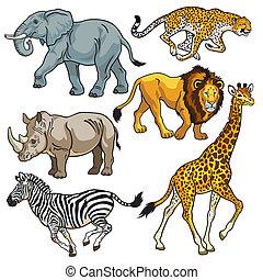 ensemble, animaux, africaine, savane