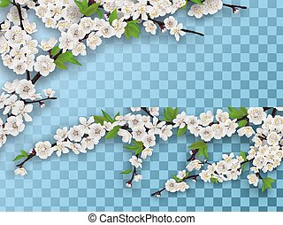 ensemble, branches, printemps, fruit arbre, fleurir