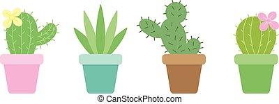 ensemble, cactus