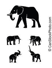 ensemble, collection, éléphant