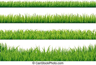 ensemble, herbe, frontières, vert