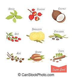 ensemble, illustration, ton, vecteur, superfoods., dessin animé, design.