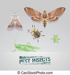 ensemble, insectes, illustration, réaliste, vecteur, casse-pieds