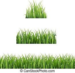 ensemble, isolé, arrière-plan vert, blanc, herbe