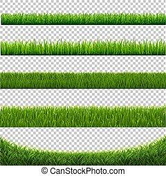 ensemble, isolé, arrière-plan vert, blanc, herbe, frontière