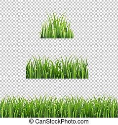 ensemble, isolé, arrière-plan vert, herbe, transparent