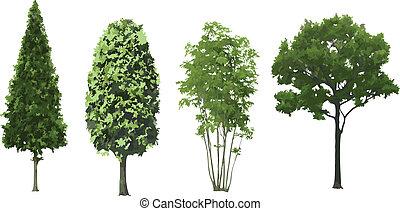 ensemble, isolated., vecteur, arbres