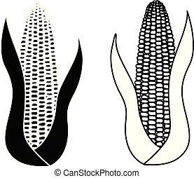 ensemble, maïs, isolé, cob, fond, blanc