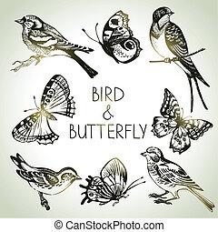 ensemble, papillon, oiseau, illustrations, main, dessiné